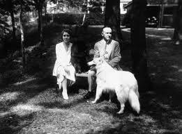 Coolidge dogs