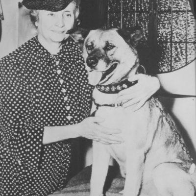 Akita and Helen Keller