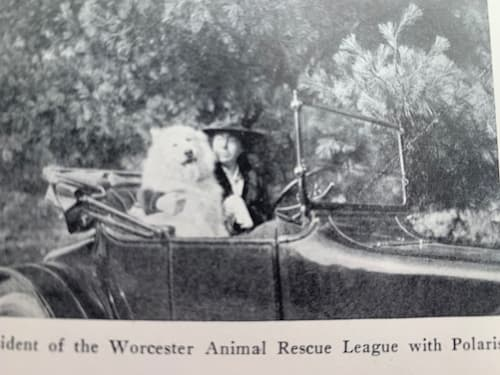 Polaris and President of Worcester Animal League