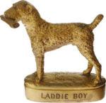 Laddie Boy